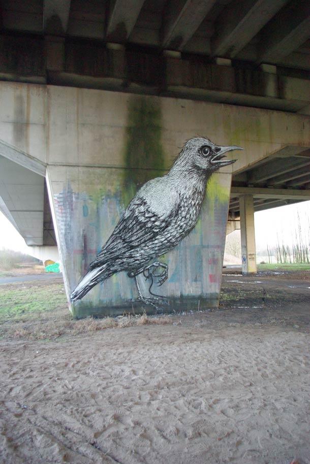 roa-street-art-33