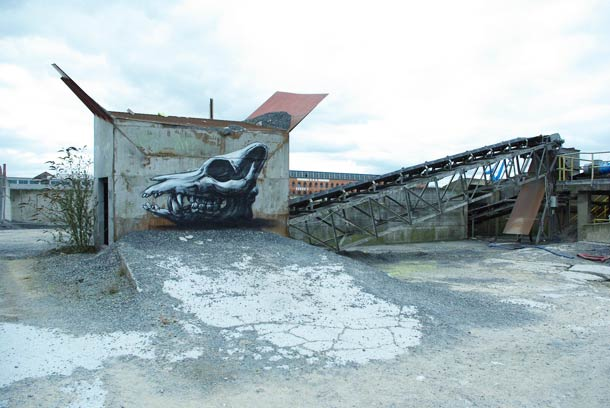 roa-street-art-42