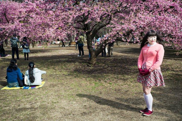 tokyo-plum-blossom-tranvestite2500.jpg