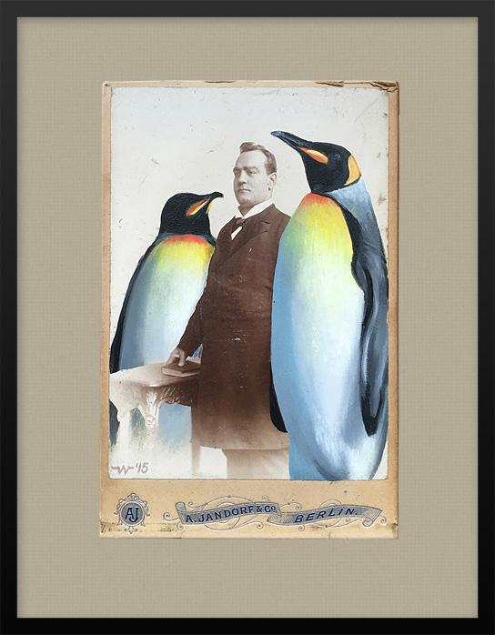 anja_wuelfing_pinguine_xs